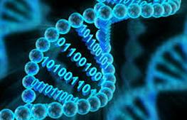Bioinformatics Infrastructure facility (BIF)